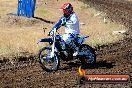 Champions Ride Day MotorX Broadford 23 11 2014 - SH8_0565