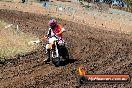 Champions Ride Day MotorX Broadford 23 11 2014 - SH8_0872