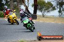 Champions Ride Day Broadford 2 of 2 parts 02 11 2015 - CRB_7007